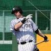 プロ野球阪神の助っ人外国人 新加入マテオ・ドリス・ヘイグ2016シーズン活躍を予想!