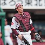 楽天・嶋基宏はWBC正捕手か控えか?2017年シーズンは?