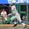仙台育英高校野球部2017年夏の甲子園
