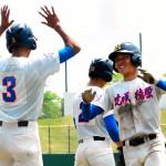 花咲徳栄高校野球部2017年夏の甲子園