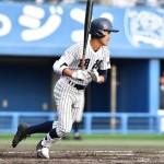 明徳義塾高校野球部2017年夏の甲子園
